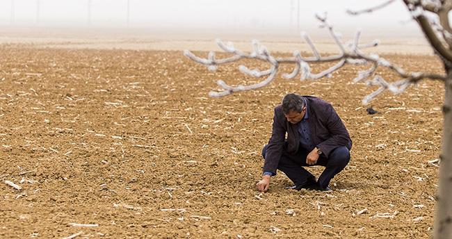 Meteoroloji'den Konya'ya zirai don uyarısı