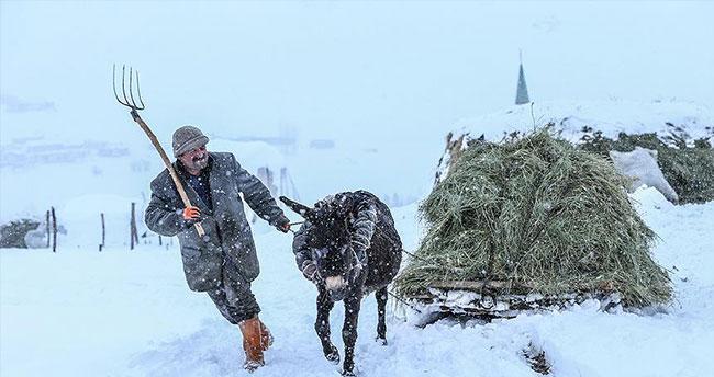 Uzun kış, besicileri zor durumda bıraktı