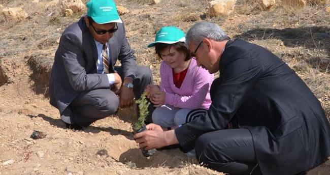 Konya'da 700 fidan toprakla buluştu