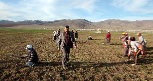 Konya'da 249 üretici tarımsal desteklerden faydalanıyor