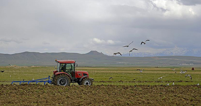 Genç çiftçi programına 378 bin başvuru