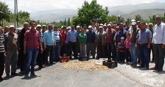 Konya'da üreticiler yol kapatma eylemi yaptı