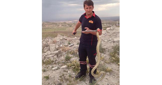 Konya'da eve giren yılanı itfaiye ekipleri yakaladı