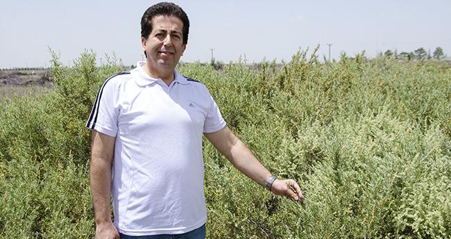 Konya'da erozyonla mücadele