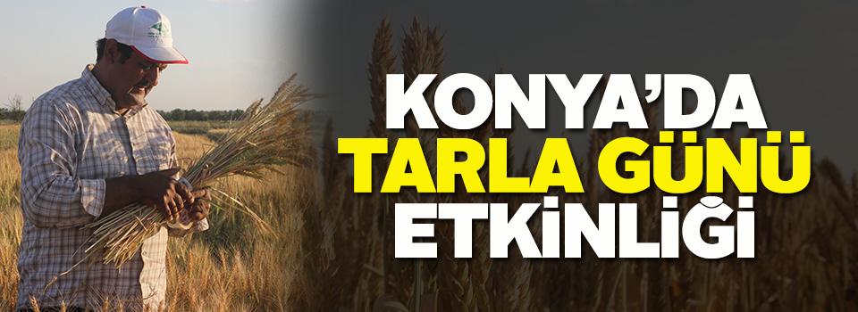 """Konya'da """"Tarla Günü"""" etkinliği"""