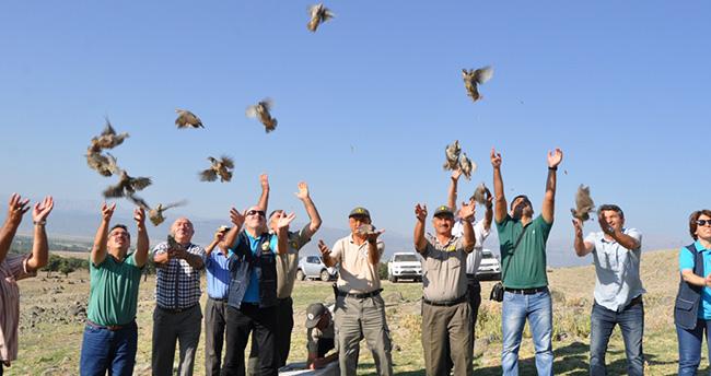 Seydişehir'de 400 keklik doğaya bırakıldı