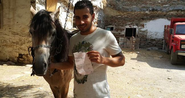 İzmir'de yarış atına trafik cezası kesildi