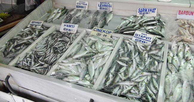 Çinekop bolluğu balıkçının yüzünü güldürdü