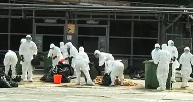 Almanya'da o virüs tekrar ortaya çıktı