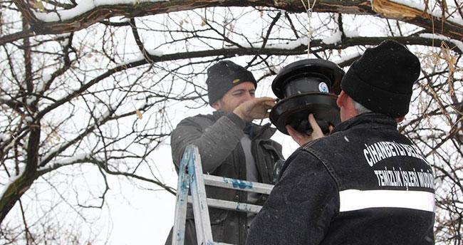 Cihanbeyli'nin dört bir tarafına kuş evleri yerleştirildi