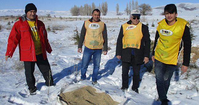 Tema gönüllüleri doğaya yem bıraktı