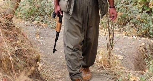 Irak'ta aşiretler PKK'ya karşı birleştiler