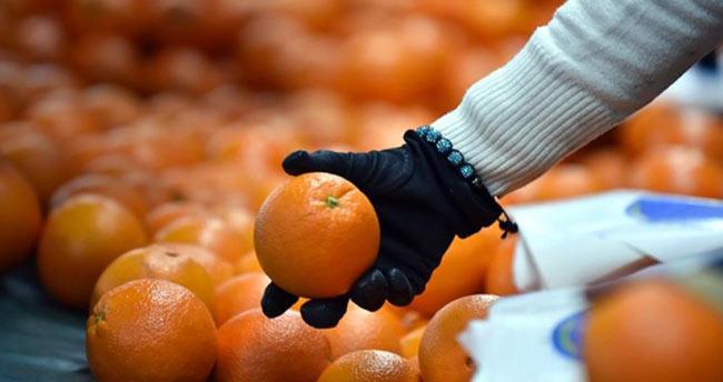 Portakalın fiyatı arttı, soğan ve salatalık ucuzladı