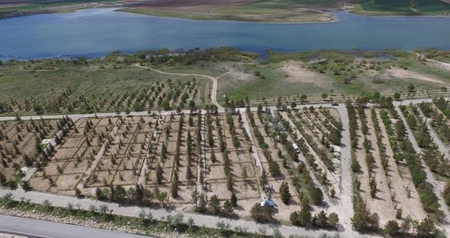 Cihanbeyli'ye hobi bahçeleri oluşturuldu