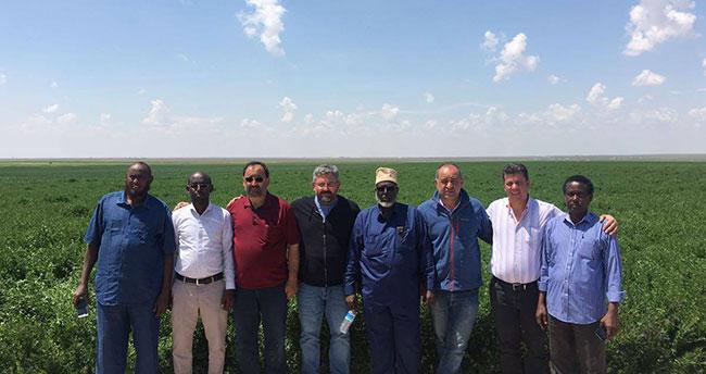 Karapınar Yoncası Somali'ye ihraç edilecek