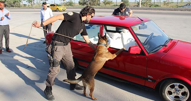 Konya'da narkotik köpeği 'Oscar' bayram mesaisinde