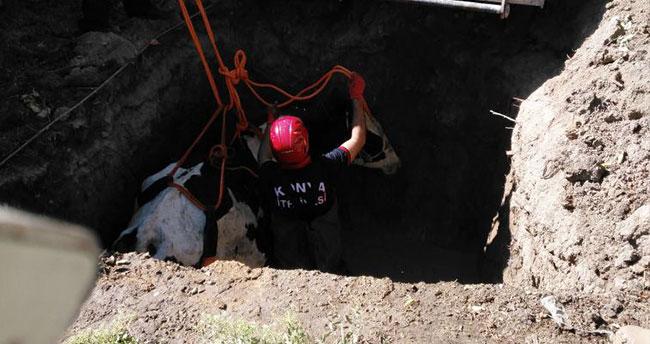 Konya'da çukura düşen ineği itfaiye kurtardı