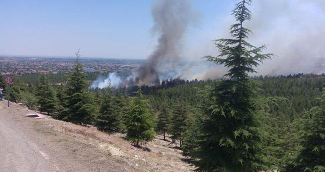 Konya'da orman yangını!