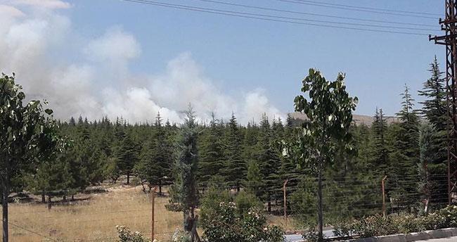 Konya'da orman yangını! Söndürme çalışmaları sürüyor