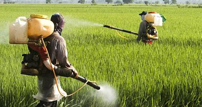 Niğde'de 12 kişi tarım ilacından zehirlendi