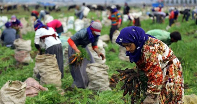 Bakan'dan mevsimlik tarım işçilerine müjde