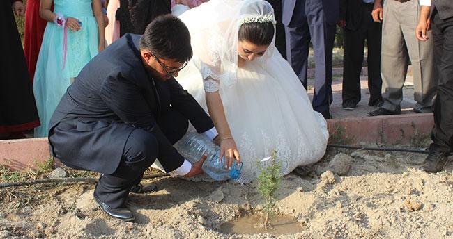 Konya'da evlenen çift nikah şekeri yerine çam fidanı dağıttı