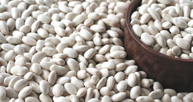 Konya, kuru fasulye üretiminde Türkiye birincisi!