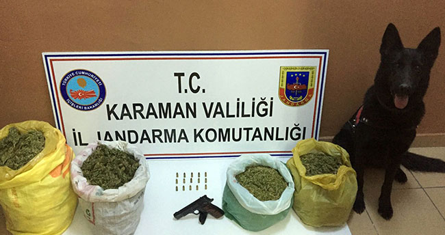 Konya ve Karaman'da esrar operasyonu