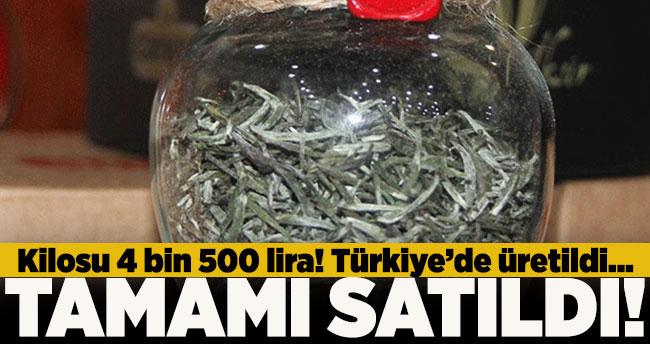 Kilosu 4 bin 500 lira! Tamamı satıldı…