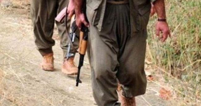 İstihbarat raporlarına yansıdı PKK bitme noktasında