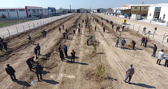 Karatay Belediyesi personeli, hatıra koruluğuna ağaç dikti