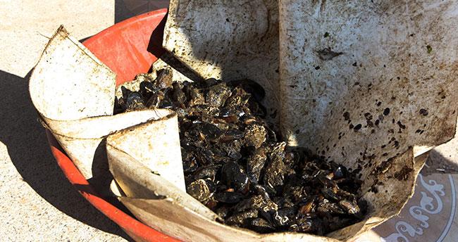 Antalya'da zabıtadan küflenmiş midye ve pilav operasyonu