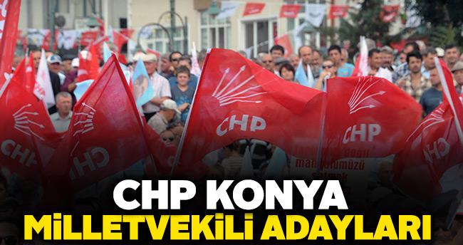 CHP Konya Milletvekili adayları