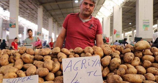 Türkiye neden Suriye'den patates alıyor? Patatesle ilgili bilmeniz gerekenler