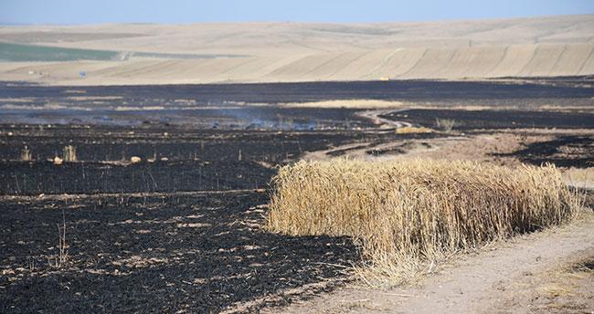 Konya'da 300 hektar tarla yandı