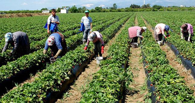 Çiftçilere destek müjdesi