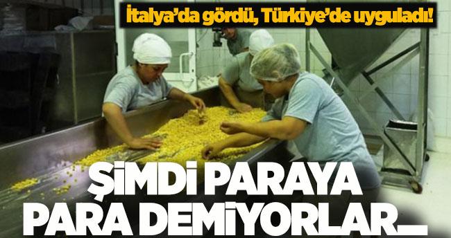 İtalya'da gördü, Türkiye'de uyguladı! Paraya para demiyorlar…