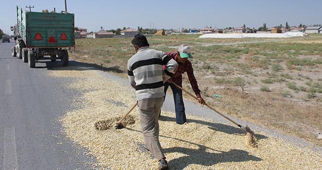 """Çiftçilerin asfaltta """"çekirdek kurutma"""" nöbeti"""