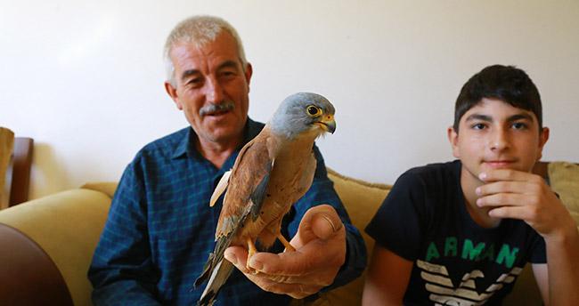 Bitkin halde bulunan kerkenez kuşu kurtarıldı