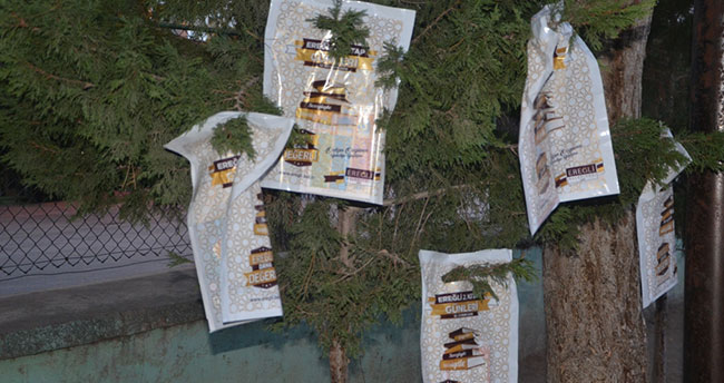 Konya'da ağaçlar kitap açtı!