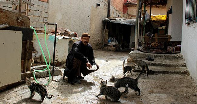 Hurda toplayıp hem ailesine hem de sokak kedilerine bakıyor