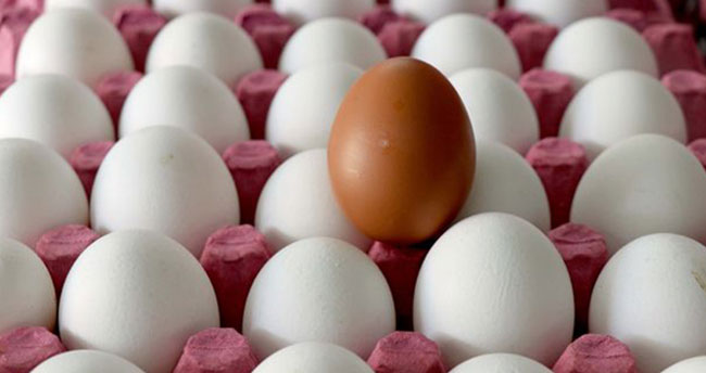 Yumurta üreticilerinden indirim açıklaması