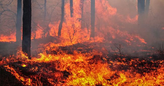 """Orman yangınlarıyla mücadelede """"yerli İHA"""" dönemi"""