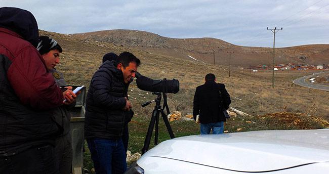 Konya'da sulak alanlardaki su kuşu sayımları tamamlandı
