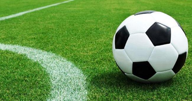 TFF 2. Lig ve TFF 3. Lig'de 25. hafta maçları