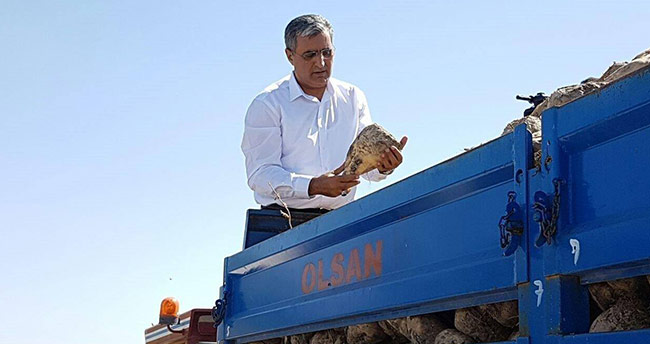 2019-2020 şeker pancarı ekimine başlandı