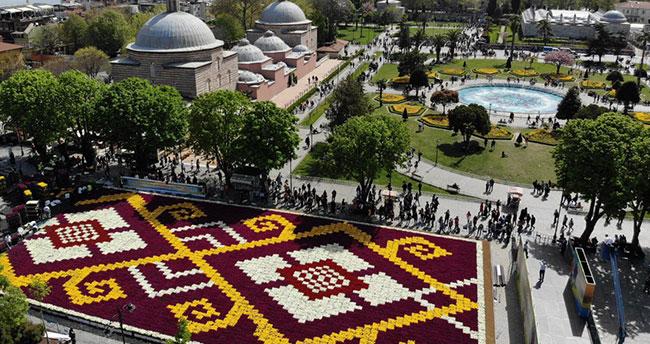 Konyalı çiftçilerin ürettiği laleler Sultanahmet'i süsledi