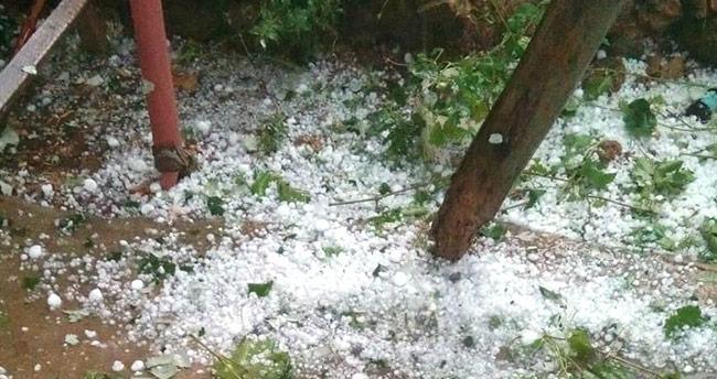 Konya'da dolu ekili alanlara zarar verdi