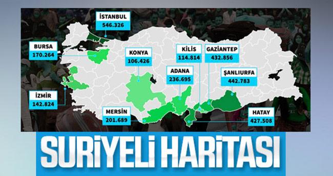 Konya'da kaç Suriyeli var! İşte son rakamlar…