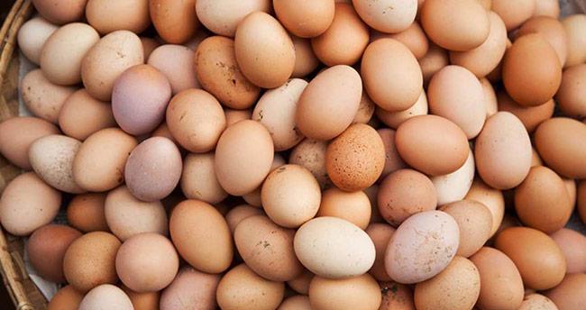 'Yumurta bir buçuk ay daha ucuz'